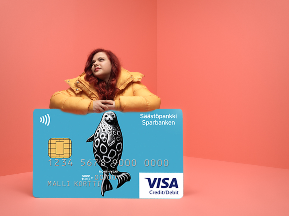 Debit/Credit-norppa